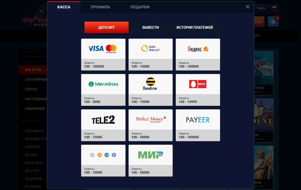 Официальное онлайн казино Вулкан Максимум